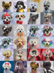 The Art of Asian Freestyle Dog Grooming Book by Riza Wisnom