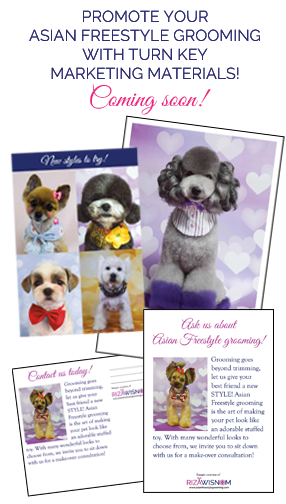 Marketing Materials - Asian Freestyle Dog Grooming