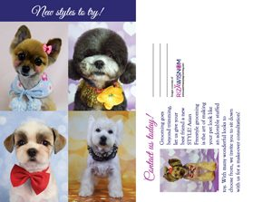 The Art of Asian Freestyle Dog Grooming Postcard