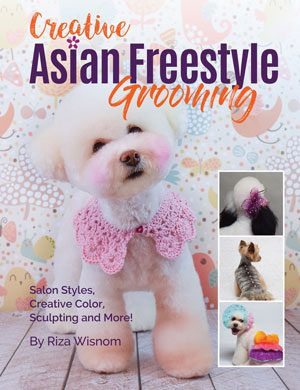 Asian Freestyle Instructional Books